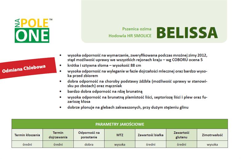 belissa-NPO-kwalifikowany-material-siewny-napoleone-pszenica-ozima