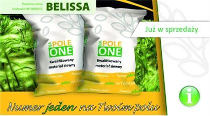 Sprawdzony materiał siewny na twoim polu – pszenica ozima klasy Premium