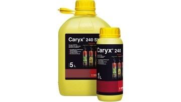 Caryx 240 SL