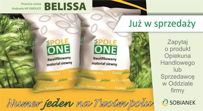 pszenica-ozima-hr-smolice-belissa