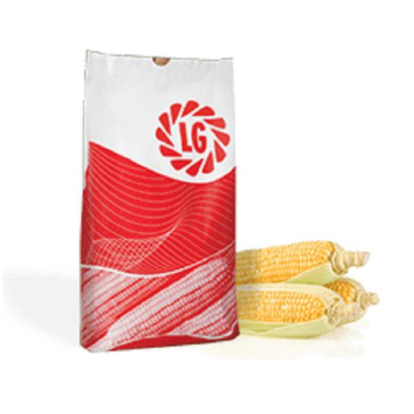 Kukurydza LG worek papierowy
